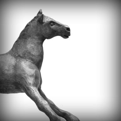 bronzen paard Speels veulen